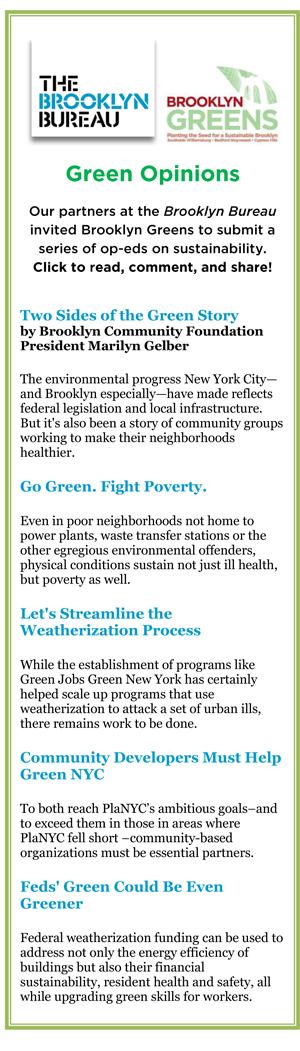 Sustainability Grows in Brooklyn | Brooklyn Community Foundation